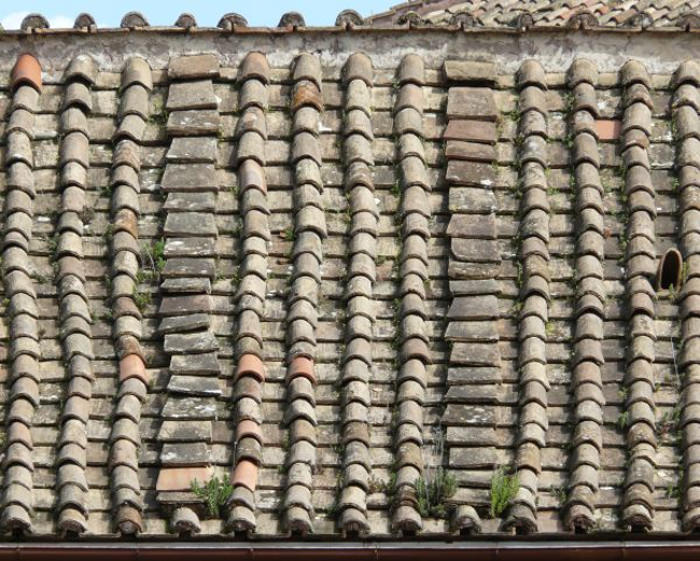 Beautiful Roof Texture