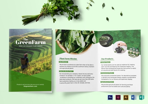 Bi-fold Green Brochure Template