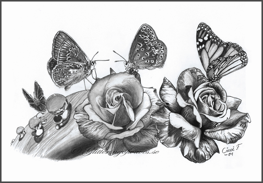 Butterfly Paradise Drawing