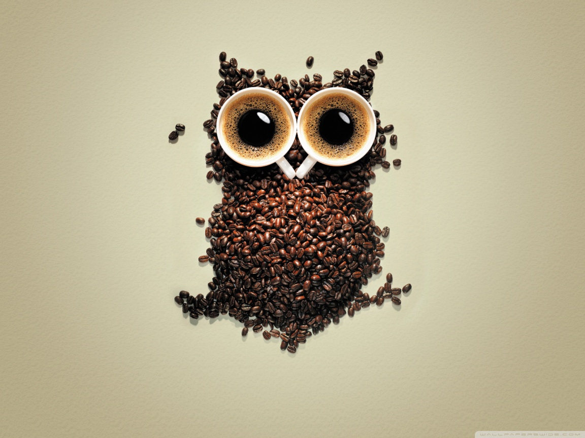 Coffe Made Owl Wallpaper