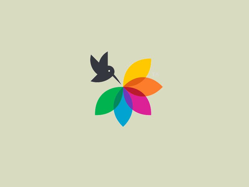 Color Harvest Logo Design
