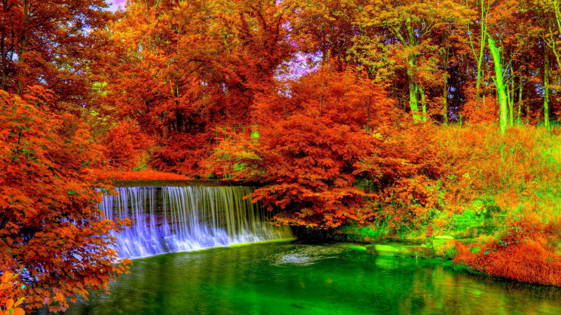 21 Autumn Wallpapers Backgrounds Images FreeCreatives