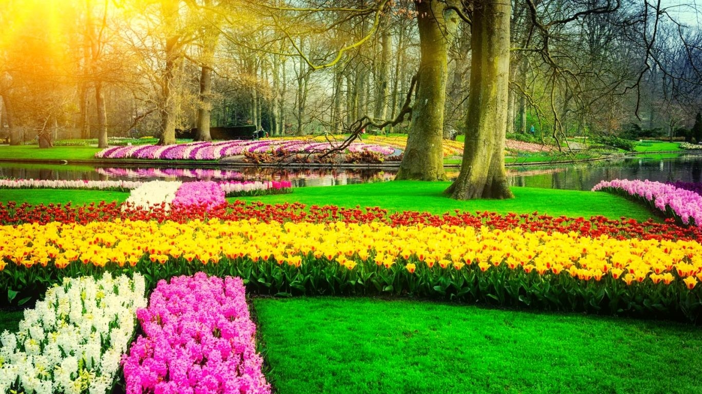 Colorful Spring Park Wallpaper