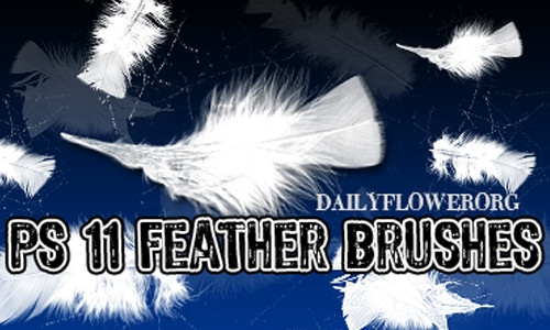Download 11 photoshop soft feather brushes