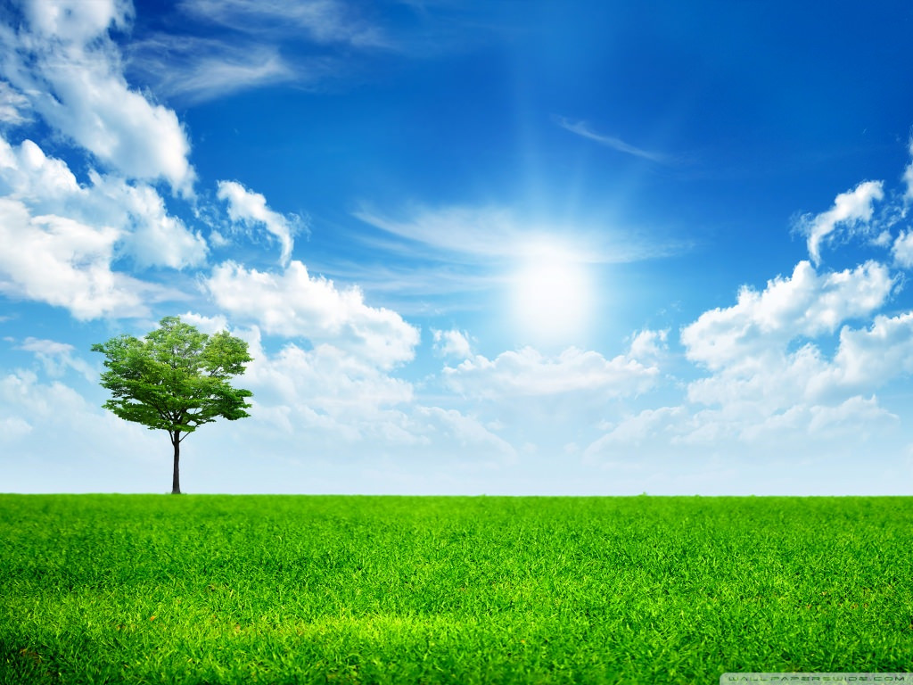 Download Green Nature Wallpaper