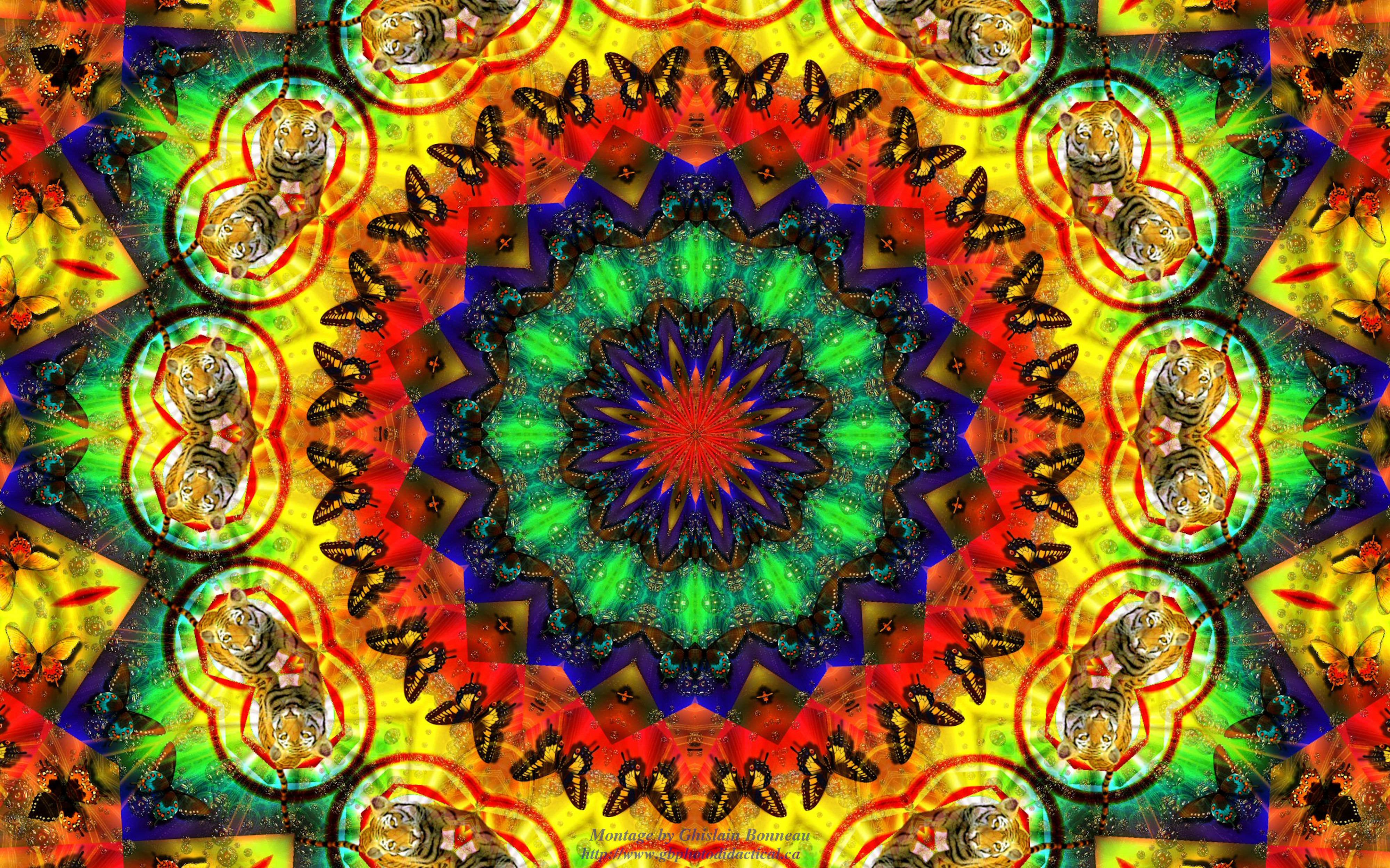 Download Hippie Background