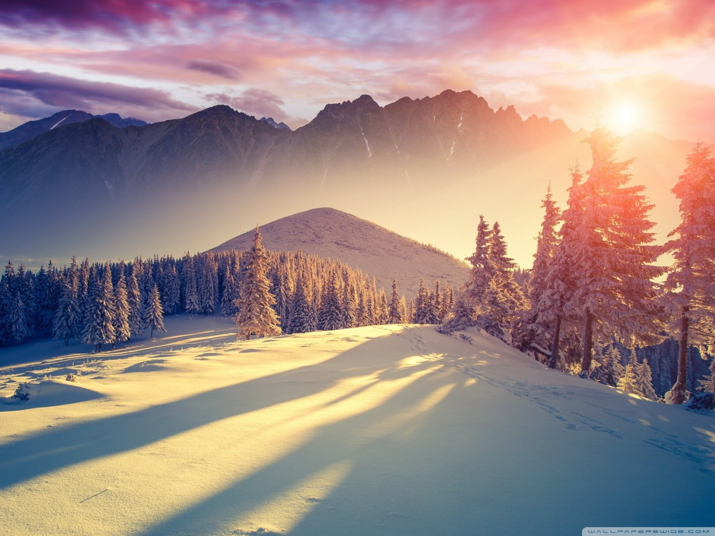 Download Sunset Winter Shadows wallpaper