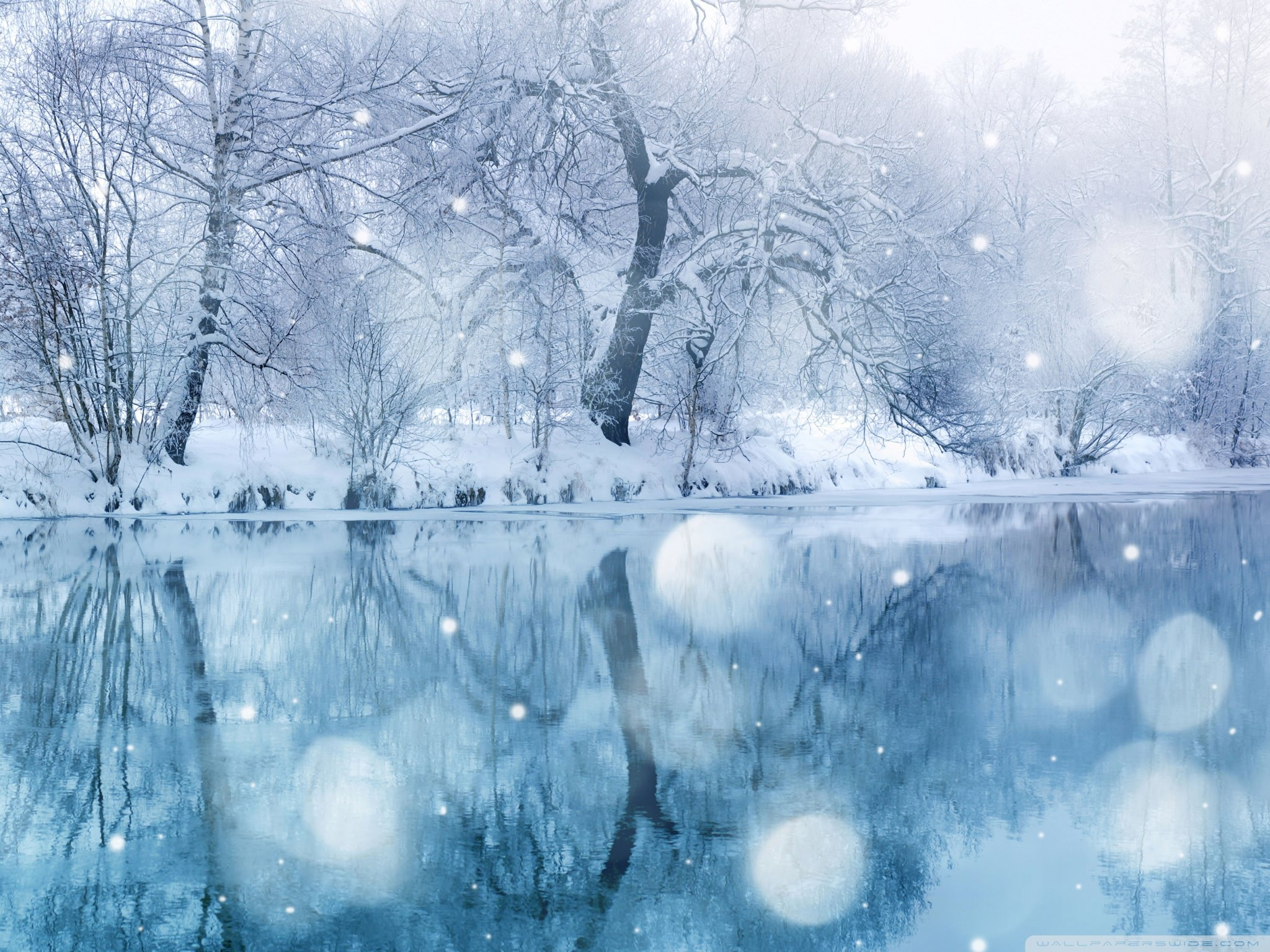 Download Winter Snowfall wallpaper