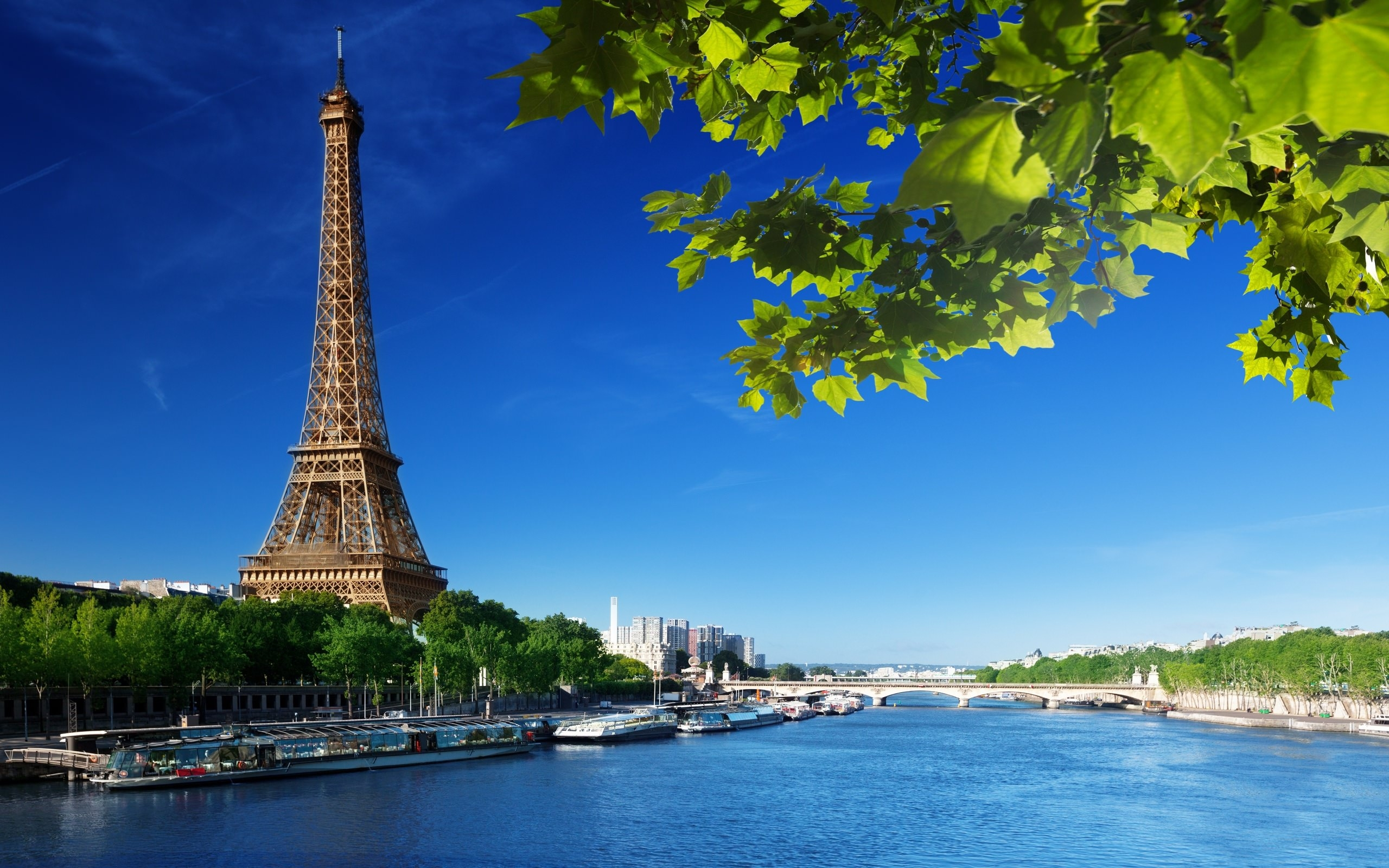 Eiffel Tower HD Wallpaper with Nature Greenery Background