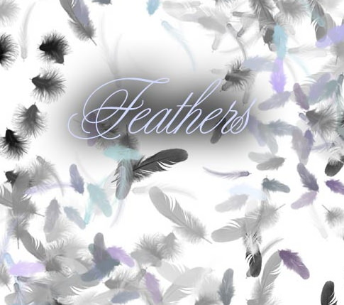 Feather brushes for gimp and photoshop
