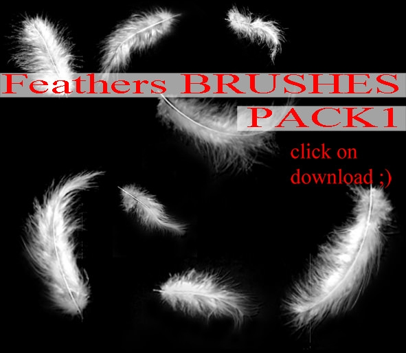 Feathers Brushes Pack
