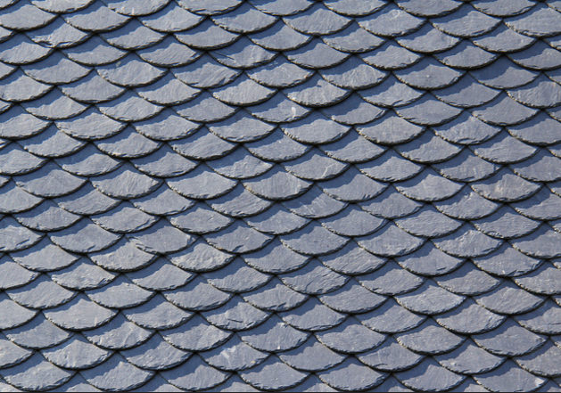 Fish Scale Pattern For Download