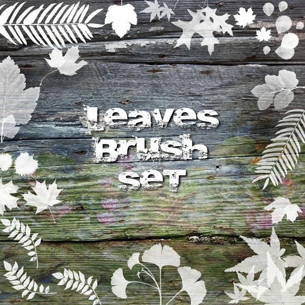 Foilge leaves Brush Set