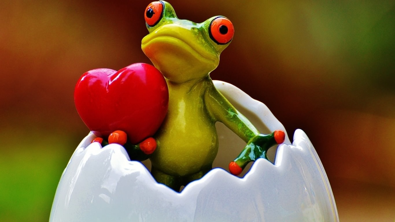 Frog with Heart Wallpaper