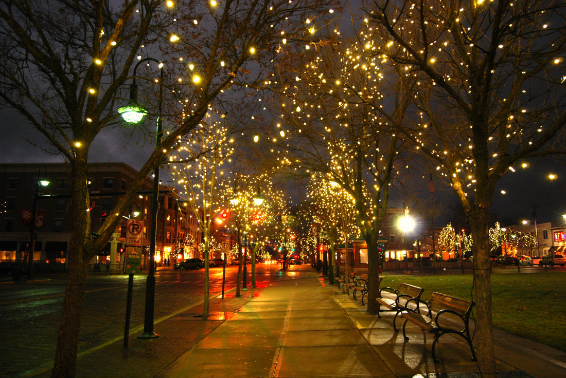 Glorious Twinkle Lights Photography