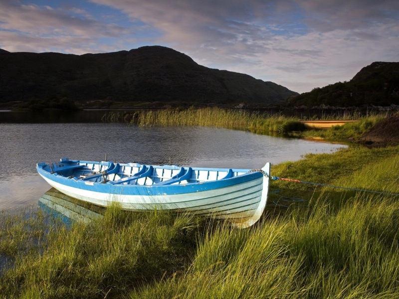 Grass Nature Boat Wallpaper