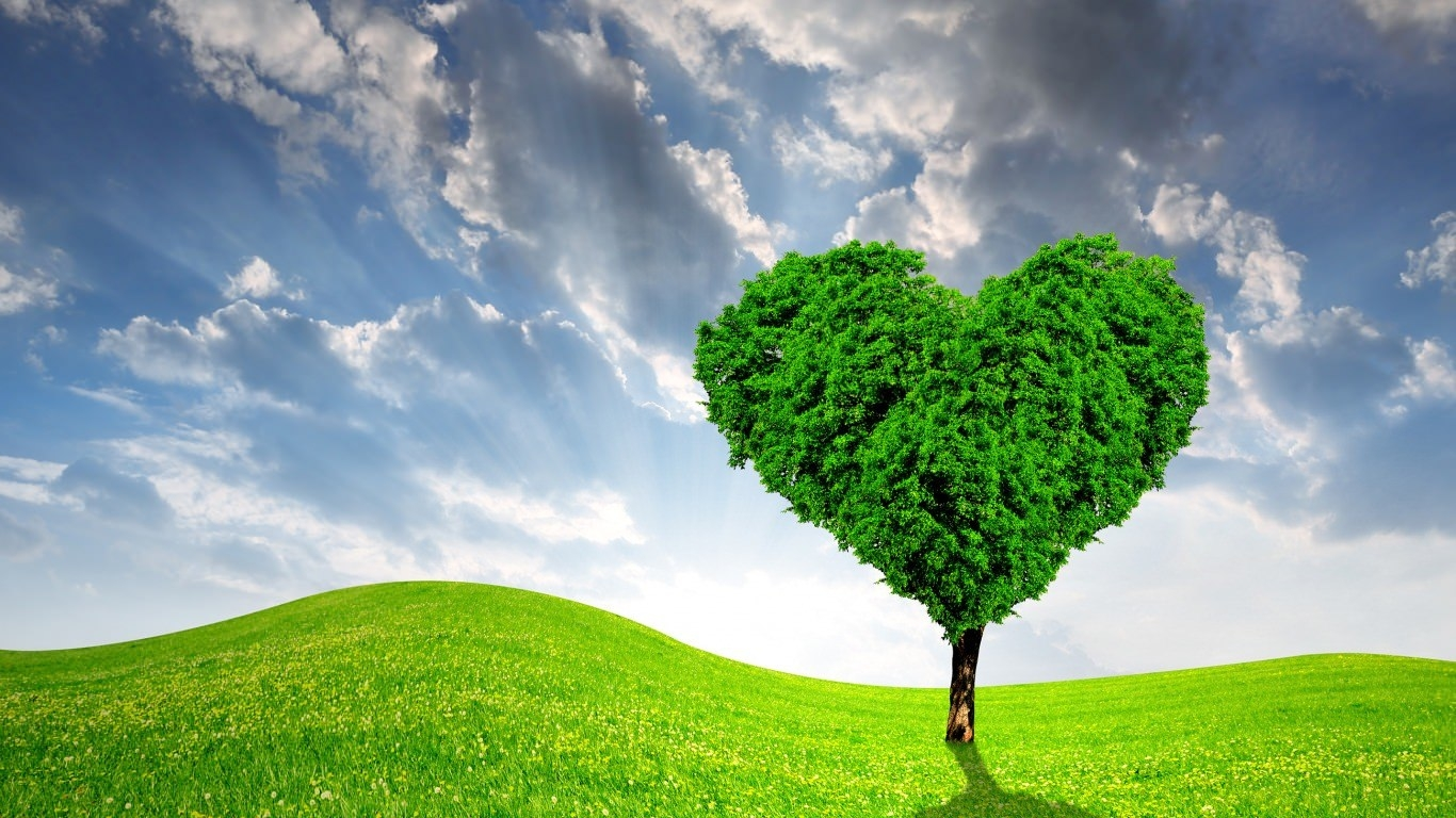 Green Heart Tree Wallpaper