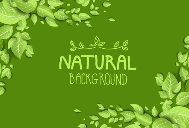 16 green nature backgrounds wallpapers frecreatives