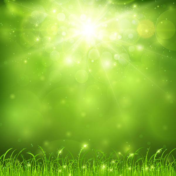 green nature and sunlight background