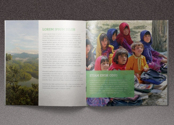 Missions for Growth Church Pomotional Brochure