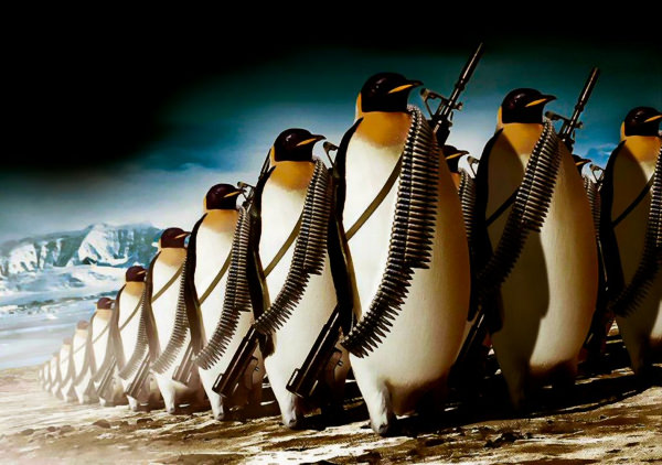 Penguin Army Wallpaper For Free
