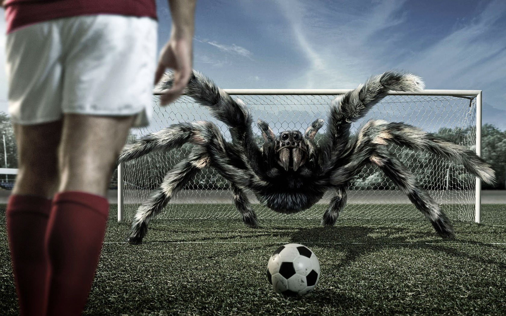 Playing Football with Arachnids Background