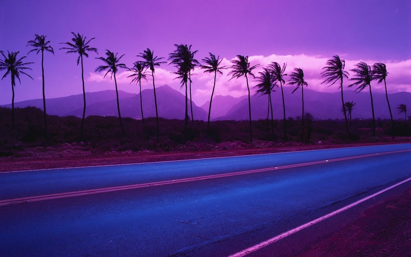 Purple Palm Trees Wallpaper