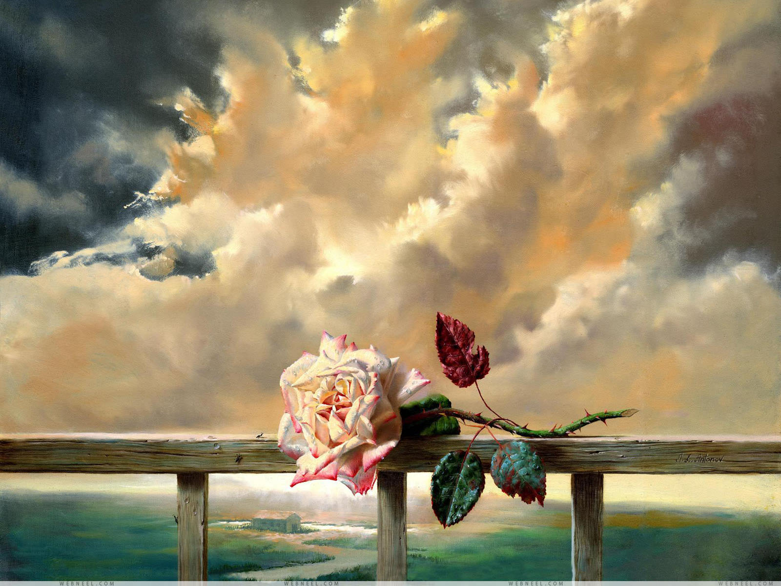 Rose Art painting Wallpaper