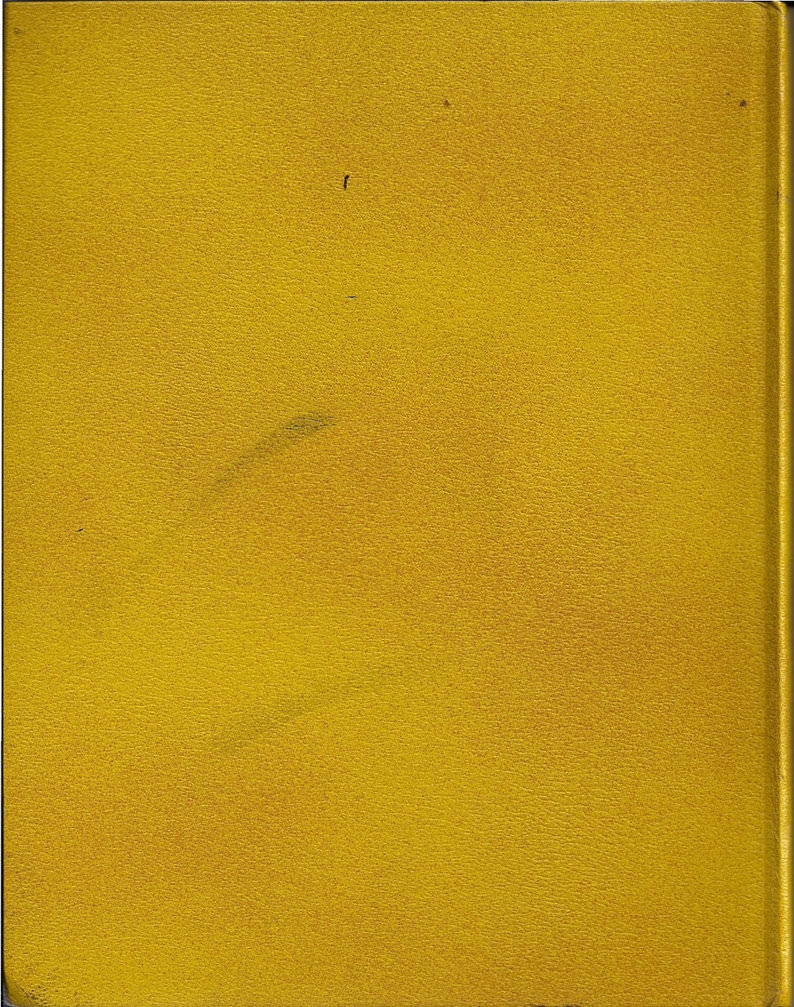 Rough Gold Book Texture