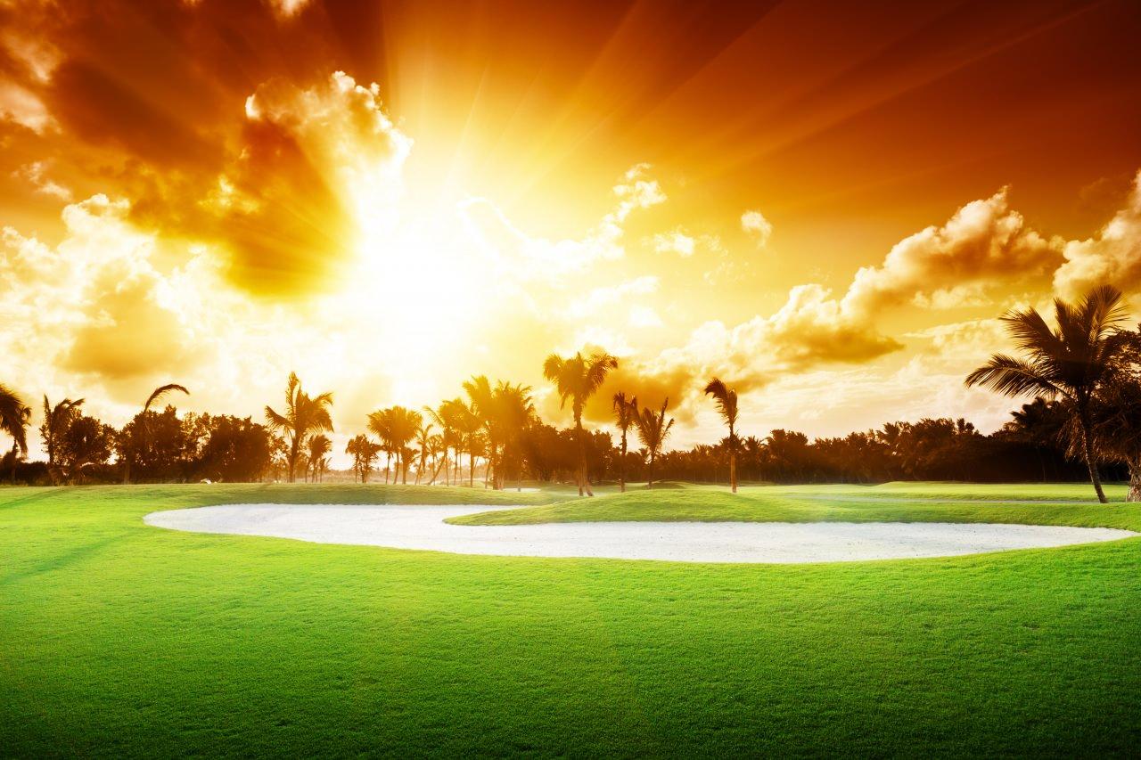 Scenery Rays Of Light Grass Wallpaper