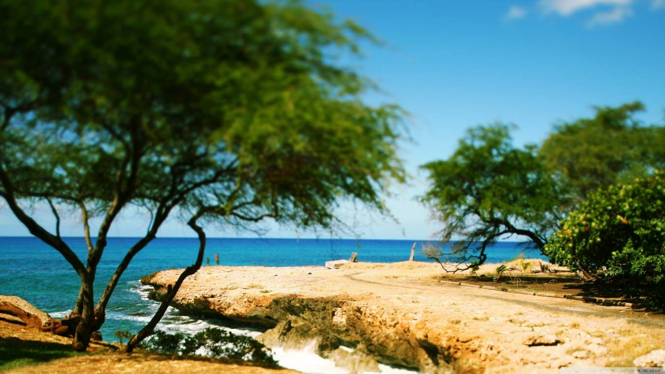 Shore Tilt-Shift Wallpaper