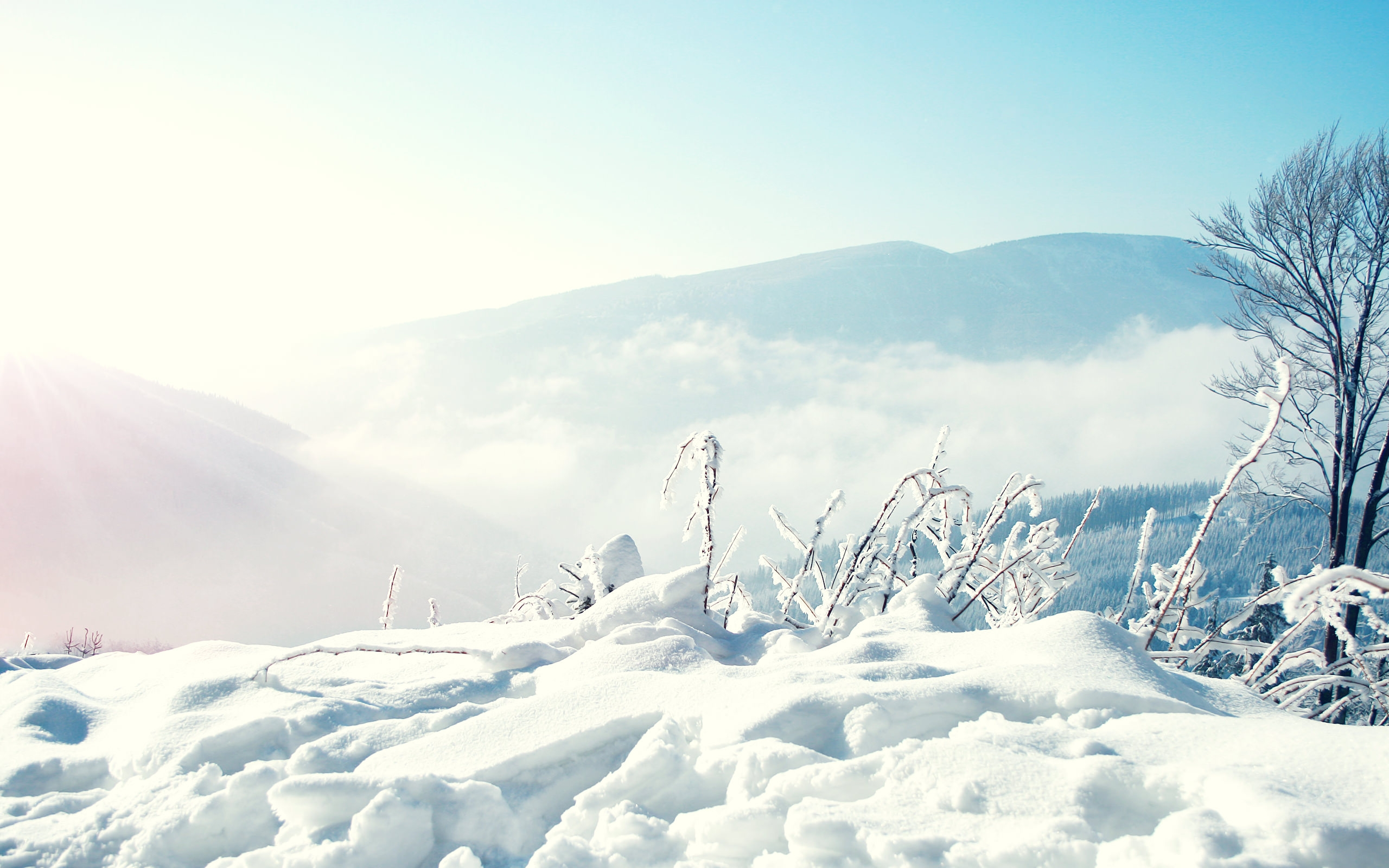 Snow Winter Mountains Wallpaper