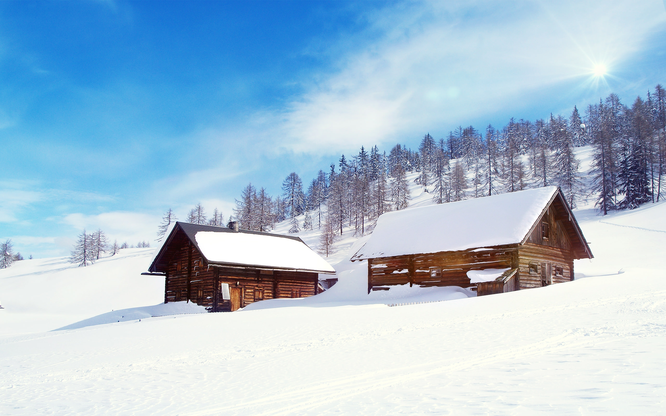snow wonderland background wallpaper