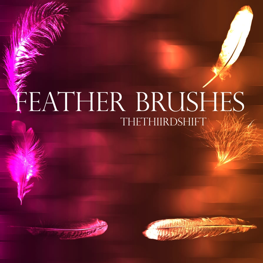 Soft Feather Brushes with Bokeh Background