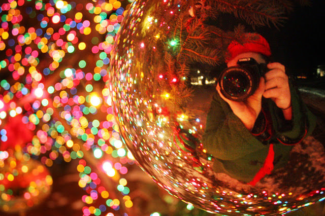 Stunning Twinkle Lights Photography