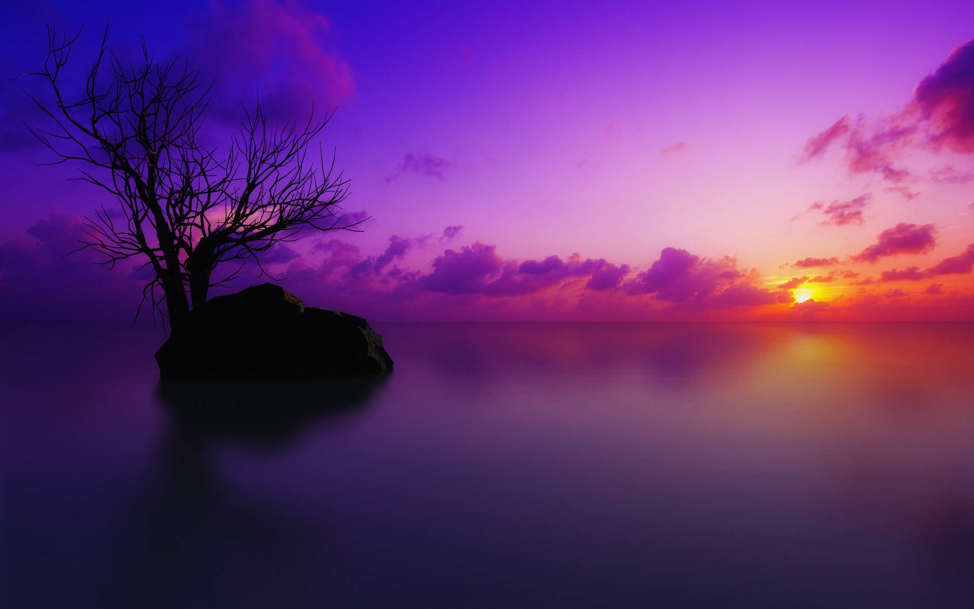 Sun Set Maldives Purple Background