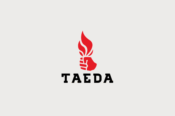Taeda Torch Logo Design For You