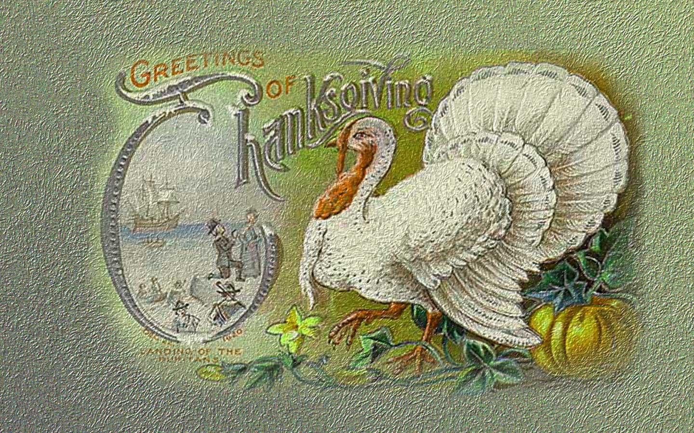 Thanksgiving Greetings Wallpaper