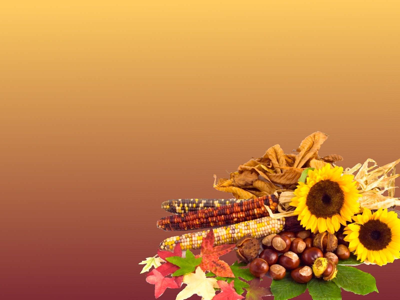 Thanksgiving HD Wallpaper