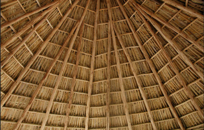 Thatched Palm Roof Texture