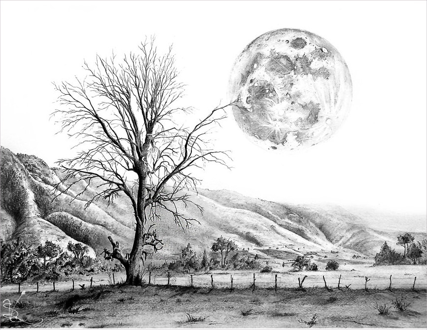 Tree & Moon Drawing