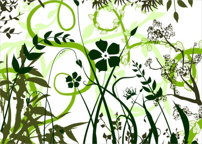 vector foliage plants photoshop brushes1