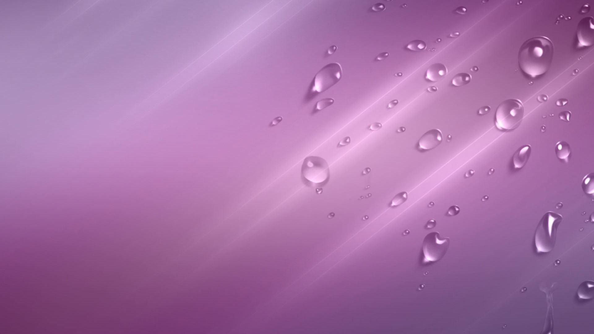 Water Bubbles on Purple Background