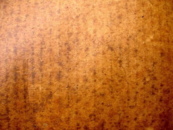 Wet Cardboard Texture