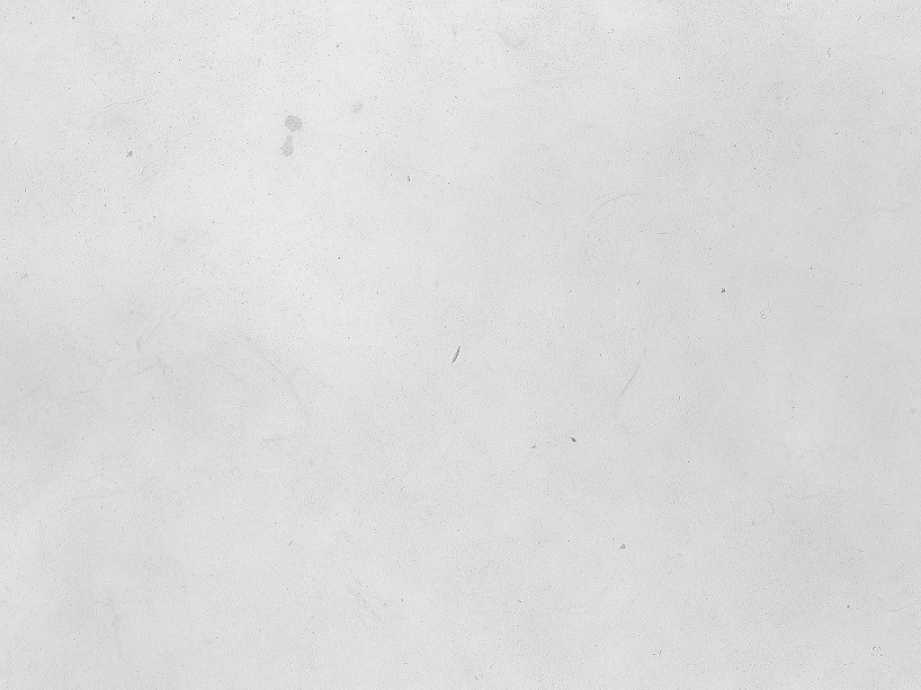 White Grunge Texture For Download