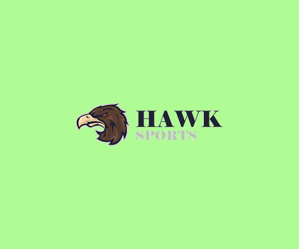 Aggressive Hawk Head Logo