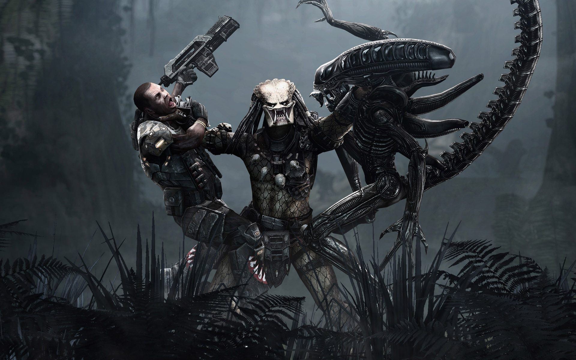 Alien vs Predator Sci Fi Wallpaper