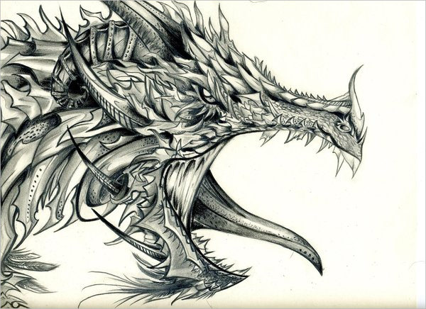 Amazing Dragon Drawing For You
