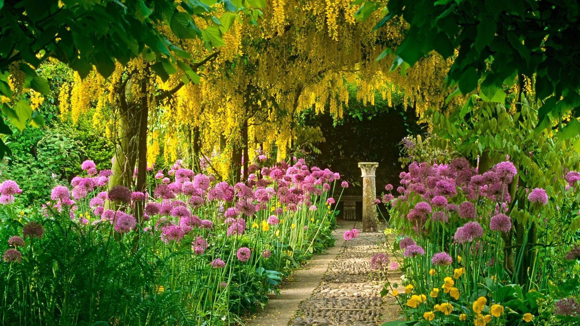 Amazing Garden Wallpapers