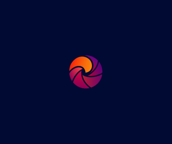 Aperture Photography Hawk Logo